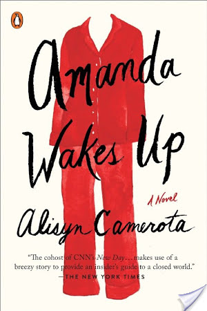 Amanda Wakes Up: A Novel